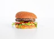 WILD בורגר - 160 גרם בורגר סאלון ביג קריות