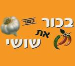 בכור את שושי תל אביב
