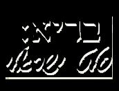 בריא: סלט ישראלי תל אביב